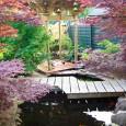 Japansetuin2